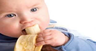 جدول غذاء الرضيع بالشهر السادس 1