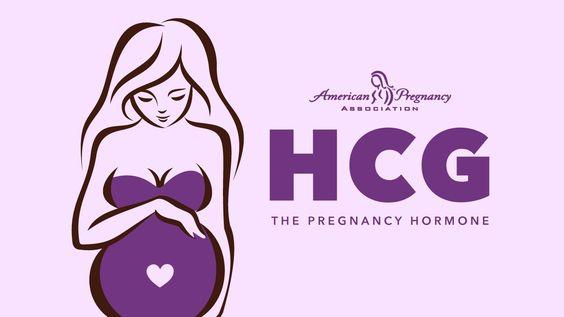 جدول نسبة هرمون الحمل
