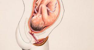 حركة الجنين في الشهر التاسع كثيره 2