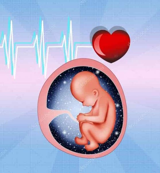 علاج تاخر الحمل بعد الاجهاض بالاعشاب