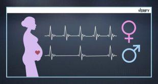 كيفية معرفة نوع الجنين في الشهر الرابع